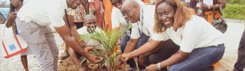 World Environment Day: Beating Air Pollution One Tree At A Time. Nestoil joined the world in celebrating World Environment Day in 2019 by planting more trees and other activities to beat air pollution.
