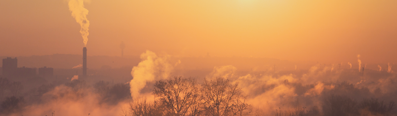 The Rise Of Air Pollution, And What We Can Do About It - Nestoil World Environment Day