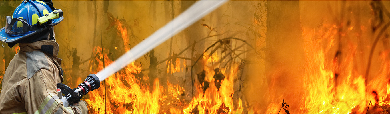 Bushfires, Climate Change and the Lessons From the Past Decade